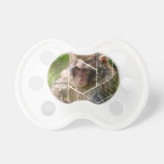 Chupeta Macaco da neve
