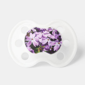 Chupeta O remendo roxo da flor