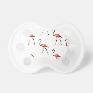 Chupeta Pacifier cor-de-rosa dos flamingos