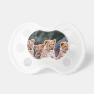 Chupeta Pacifier de Cubs de leão do bebê
