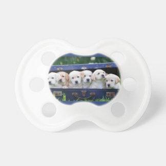 Chupeta Pacifier do bebê com os seis filhotes de cachorro