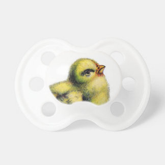 Chupeta Pintinho Pacifer do bebê