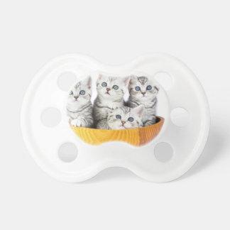 Chupeta Quatro gatos novos que sentam-se na bacia de