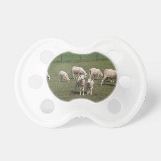 Chupeta Rebanho dos carneiros