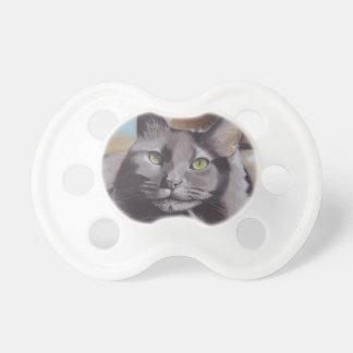 Chupeta Retrato cinzento do animal de estimação do gato
