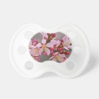 Chupeta Rosa contra as flores de cerejeira cinzentas de um