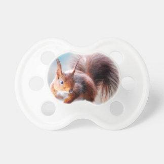 Chupeta Squirrel esquilo Écureuil