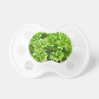 Chupeta Teste padrão verde da erva da salsa
