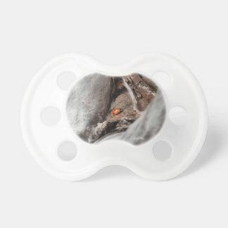 Chupeta tetina de bebé foto de um joaninha