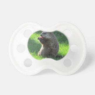 Chupeta Tomate Groundhog