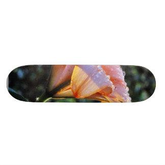 Chuva das flores dos hemerocallis do hemerocallis shape de skate 18,1cm