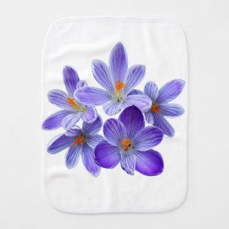 Cinco açafrões violetas 05,0, cumprimentos do paninho para bebês