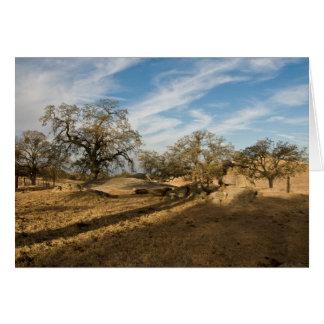 Cinco carvalhos e sombras longas cartão comemorativo
