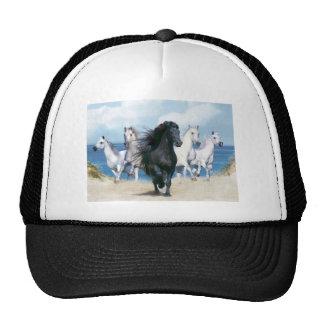 Cinco cavalos de galope boné
