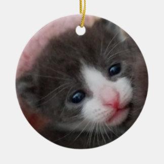 Cinza & branco do ornamento do gatinho do bebê