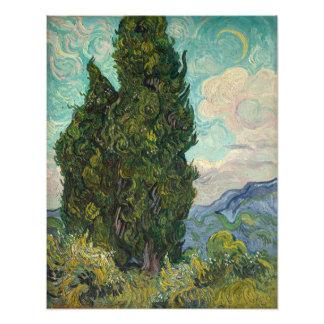 Ciprestes por Vincent van Gogh Impressão De Foto