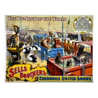 Circo do vintage - circo dos irmãos das vendas cartão postal