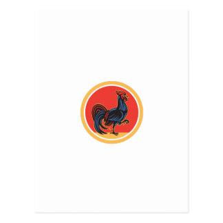 Círculo de passeio de marcha do galo da galinha cartao postal