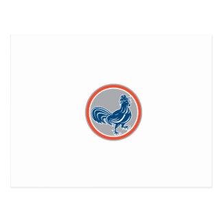 Círculo de passeio do galo da galinha retro cartão postal