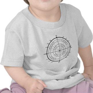 Círculo de unidade do geek da matemática camisetas