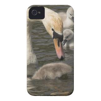 Cisne com a caixa corajosa de Blackberry dos Capinhas iPhone 4