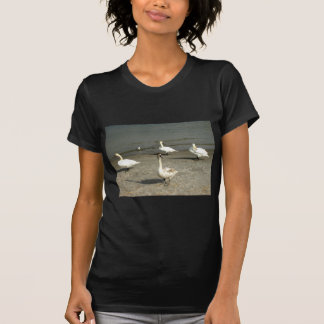 Cisne dos animais tshirt