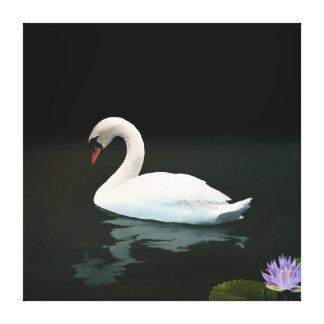 Cisne muda - impressão das canvas impressão de canvas esticada