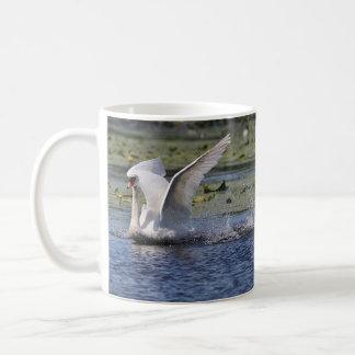 Cisne muda na lagoa caneca de café