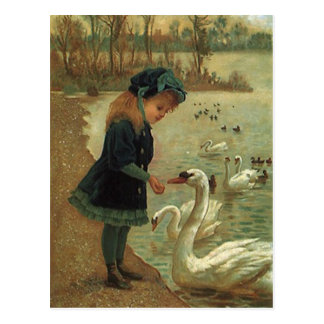 Cisnes de trompetista de alimentação do VICTORIAN Cartão Postal
