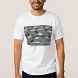 cisnes Preto-necked (melancoryphus do Cygnus) Camiseta