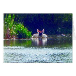 Citações do amor do cartão de nota dos pelicanos