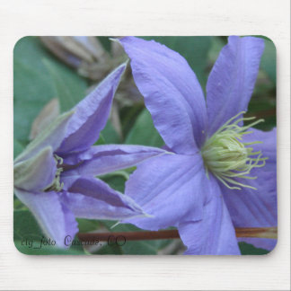 Clematis roxo mouse pad