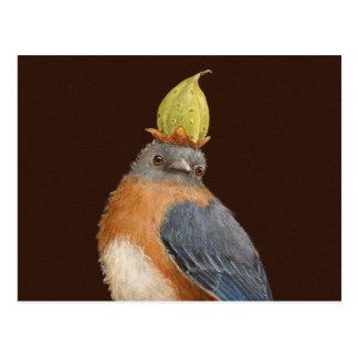 Cleome o cartão do bluebird