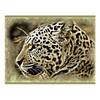 Close up de Jaguar Cartão Postal