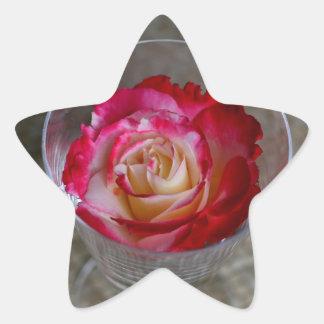Close up do rosa do rosa no vidro de vinho adesito estrela