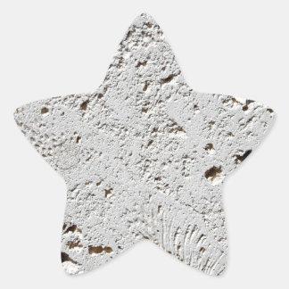 Close up fóssil da superfície do azulejo da adesivo estrela
