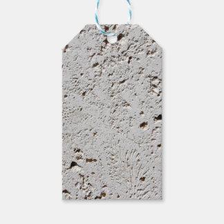 Close up fóssil da superfície do azulejo da etiqueta para presente