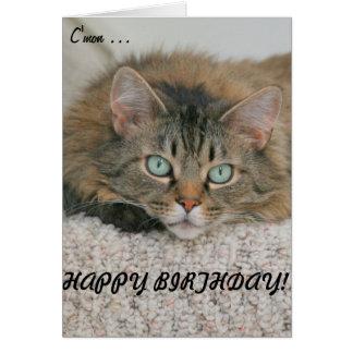C'mon - cat&card do feliz aniversario cartão comemorativo