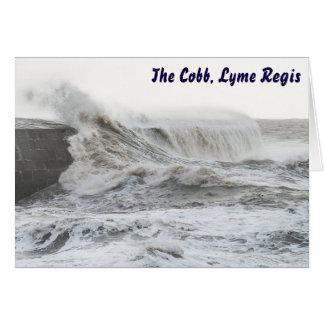 Cobb tormentoso, cartão de Lyme Regis