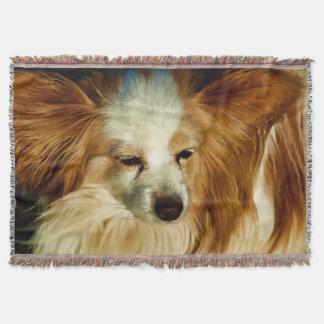 Cobertor Beleza de Papillon   -   raça do cão