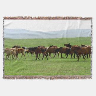 Cobertor Cavalos na pastagem - fotografia da paisagem
