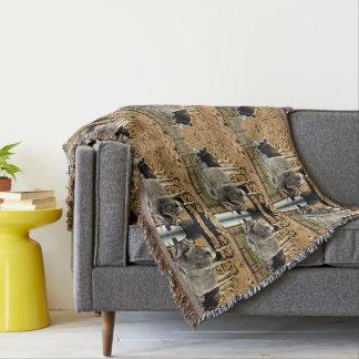 Cobertor Cobertura do lance de dois touros
