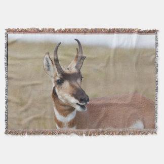 Cobertor Cobertura do lance de Pronghorn