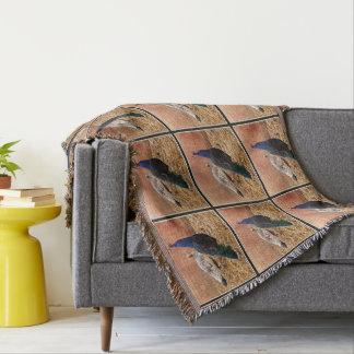 Cobertor Cobertura do lance do pavão