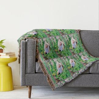 Cobertor Cobertura gorda do lance das codorniz