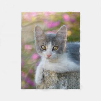 Cobertor De Velo Amantes macios do gato da foto do gatinho bicolor