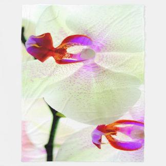 Cobertor De Velo Amor branco da orquídea