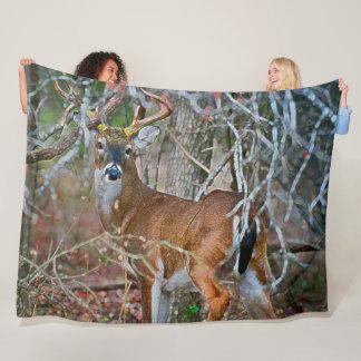 Cobertor De Velo Arte do acrílico dos animais selvagens do