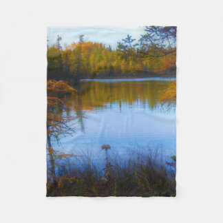 Cobertor De Velo árvores através de um lago na cobertura da queda