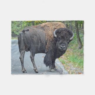 Cobertor De Velo Bisonte americano no outono adiantado